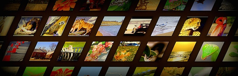 Free Flickr WordPress Plugins