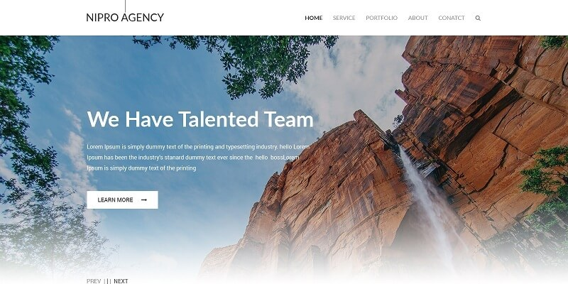 Free Agency PSD Website Templates