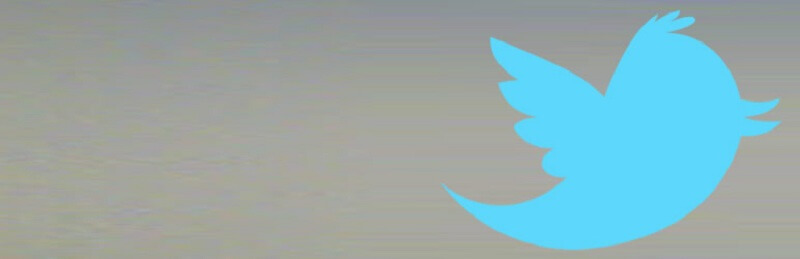 Tweets Box