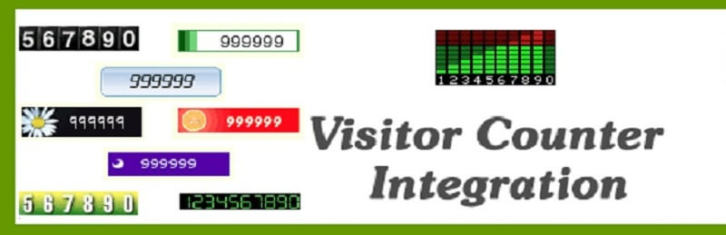Visitor Counter